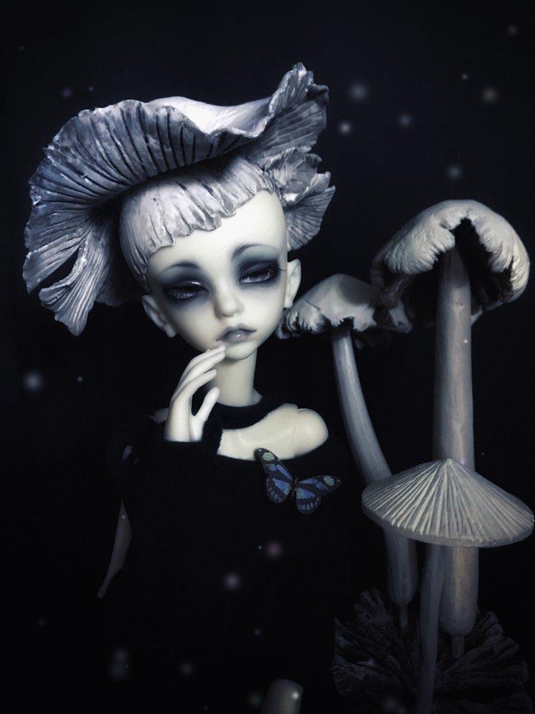 fungus-boy_37237836015_o.jpg